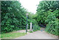 TG1908 : Yare Valley Walk by N Chadwick