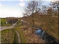 SJ5694 : Sankey Canal from Penkford Bridge by David Dixon