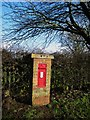 NU0049 : Post box near Derwentwater Terrace, Scremerston by Graham Robson