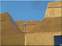 SO8455 : Roofline - The Hive, Worcester by Chris Allen