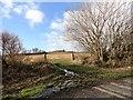 NZ2452 : View of Newfield Farm by Robert Graham
