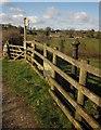 SX7582 : Metal post near Neadon by Derek Harper