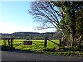 SY8683 : Fields at Black Barrow by Nigel Mykura