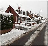 ST3091 : Snowy Wavell Drive, Malpas, Newport by Jaggery