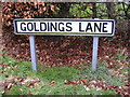 TM4461 : Goldings Lane sign by Adrian Cable
