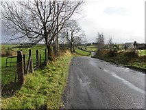 H5575 : Loughmacrory Road, Altdrumman by Kenneth  Allen