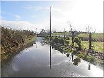 H5575 : Flooding, Merchantstown Road by Kenneth  Allen