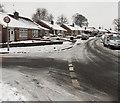 ST3091 : Snowy Almond Drive bungalows, Malpas, Newport by Jaggery