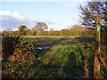 TM4262 : Footpath to the B1119 Saxmundham Road by Adrian Cable