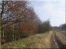 SE4111 : Footpath west of Brierley Tunnel by John Slater