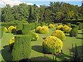 SK4032 : Topiary at Elvaston Castle by Trevor Rickard