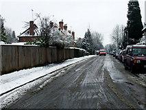 TL1314 : Avenue St Nicholas by Thomas Nugent