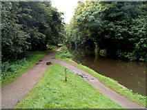 SO8275 : A canal cycle route, Kidderminster by Jaggery