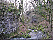 SD9163 : Looking downstream from Janet's Foss by John Illingworth