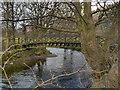 NY3307 : River Rothay, Millennium Bridge at Grasmere by David Dixon