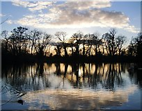 TQ0481 : Little Britain Lake at sunset (1) by Stefan Czapski