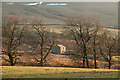 NY2937 : Field east of  Bonners Farm by Trevor Littlewood