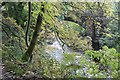 SJ9665 : Dane Bridge by Dave Dunford