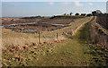 SJ5673 : Quarryside footpath by Dave Dunford