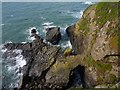 SW6911 : Small sea arch and birds near The Lizard by Ivan Hall