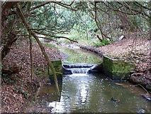 TQ1293 : Weir on Hartsbourne Stream by Robin Webster