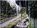 H2774 : Icicles, Sloughan Glen by Kenneth  Allen