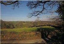 SX7087 : Field near Westcott by Derek Harper