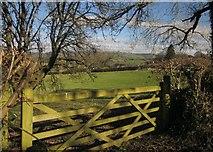 SX7087 : Gate and field, Westcott by Derek Harper