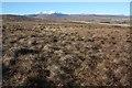 NC5434 : Moorland west of Cnoc Badan Eachainn by Dorothy Carse