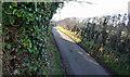 SJ5775 : Cliff Lane by Dave Dunford