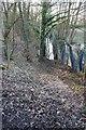 SJ5672 : Impassable bridleway by Dave Dunford