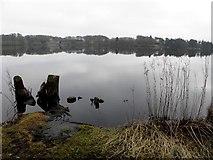 H5776 : Loughmacrory Lough, Altdrumman by Kenneth  Allen