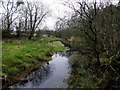 H5776 : Waterway, Loughmacrory Lough by Kenneth  Allen