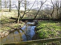 NU2106 : Fallen timber across Grange Burn by Russel Wills