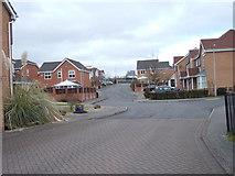 SE3026 : Forest Ridge - looking towards Common Lane by Betty Longbottom