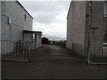 NX4355 : Smith Terrace by Billy McCrorie