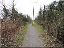 NX4355 : Path to Harbour Road by Billy McCrorie