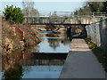 SO9063 : Swan Drive bridge over the canalised River Salwarpe by Chris Allen