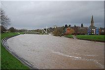 SX9192 : River Exe by N Chadwick