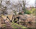 SJ9494 : Captain Clarks Bridge by Stephen Burton