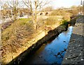 SJ8698 : River Medlock at Holt Town by Gerald England