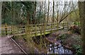 SO8474 : Footbridge over a stream in  Spennells Valley Nature Reserve, Spennells, Kidderminster by P L Chadwick
