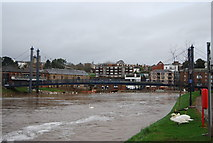 SX9192 : Footbridge over the River Exe by N Chadwick
