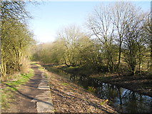 SD9100 : Hollinwood Branch Canal (disused) by John Topping