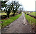 ST4391 : Entrance drive to The Cayo farm near Llanvaches by Jaggery