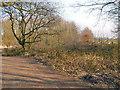 SJ4890 : Path between holes, Blundell's Hill Golf Club by David Dixon