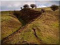 SU0765 : The Wansdyke by Gillie Rhodes