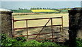 O0190 : Field gate, Richardstown near Ardee by Albert Bridge