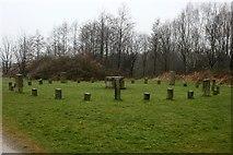 SE3231 : Stone circle artwork beside the Trans Pennine Trail by Graham Hogg
