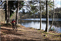 NT4227 : The Upper Lake at Bowhill Country Park by michael ely